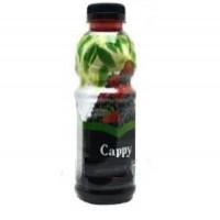 آبمیوه انواع توت ها کاپی حاوی تکه های میوه 500 میلی لیتر Cappy