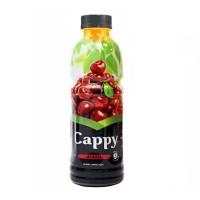 آبمیوه آلبالو کاپی حاوی تکه های میوه 500 میلی لیتر Cappy